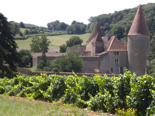 photo Domaine Chateau De Nobles Bourgogne Aligote